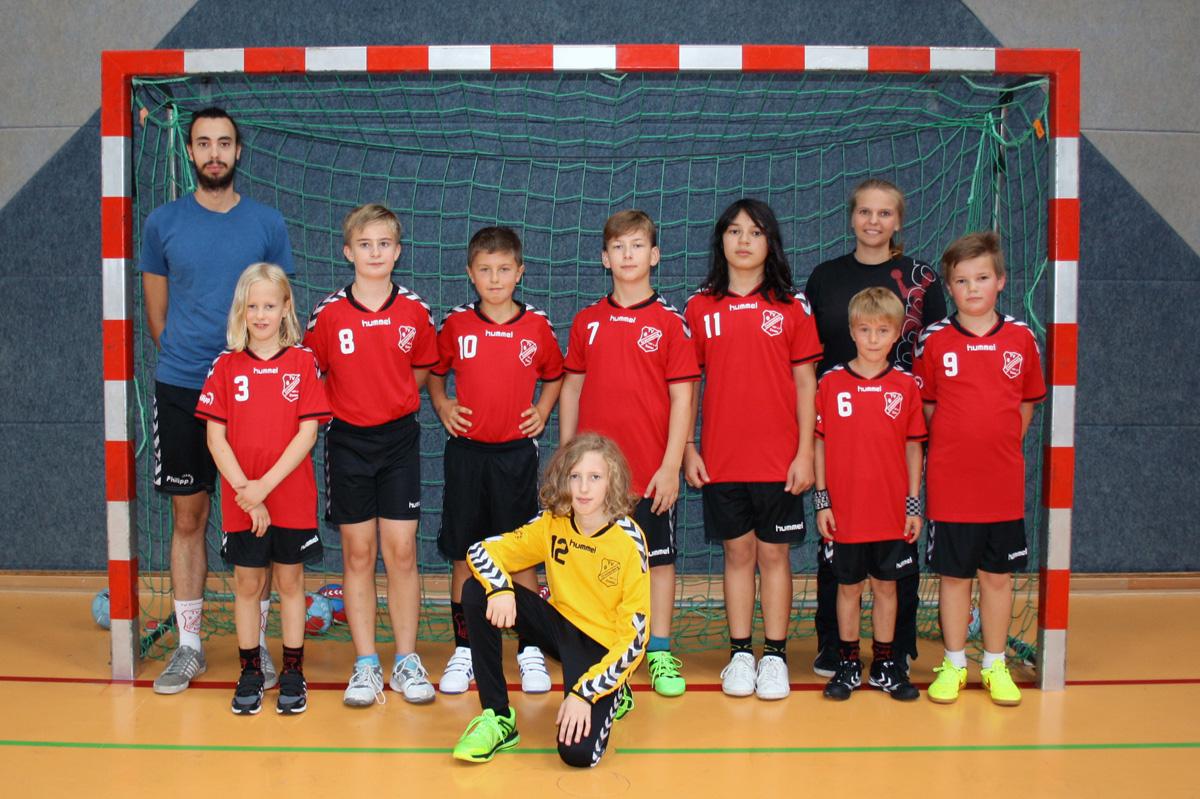 D-Jugendmannschaft Saison 2016 / 2017